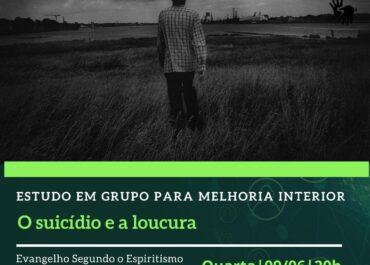 O suicídio e a loucura. EGMI Virtual 09/06/2021 às 20h